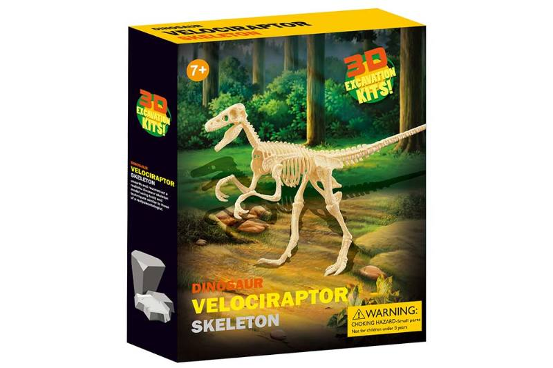 Educational self-chambering assembled Toys assembled explosive raptor skeleton No.TA245096