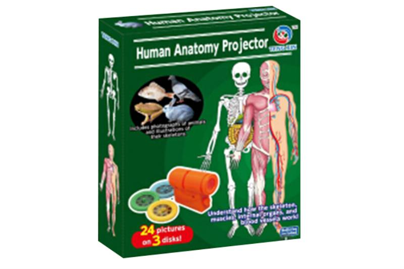 Child Projection Toy Series Human Organ Series Projector No.TA215051